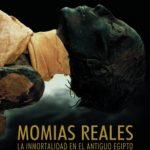 ver MOMIAS REALES: LA INMORTALIDAD EN EL ANTIGUO EGIPTO online pdf gratis