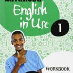 leer ADVANCED ENGLISH IN USE 1º ESO WORKBOOK gratis online