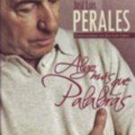 leer ALGO MAS QUE PALABRAS: CONVERSACIONES CON JOSE LUIS PERALES gratis online