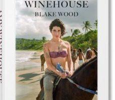 leer AMY WINEHOUSE. BLAKE WOOD gratis online