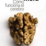 leer COMO FUNCIONA EL CEREBRO gratis online