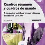 leer CUADROS RESUMEN Y CUADROS DE MANDO gratis online