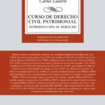 leer CURSO DE DERECHO CIVIL PATRIMONIAL: INTRODUCCION AL DERECHO gratis online