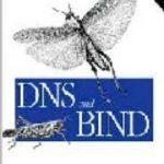 leer DNS AND BIND gratis online