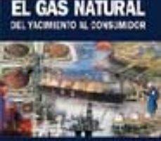 leer EL GAS NATURAL DEL YACIMIENTO AL CONSUMIDOR: APROVISIONAMIENTOS Y CADENA DEL GAS NATURAL LICUADO gratis online