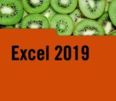 leer EXCEL 2019 gratis online