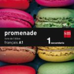 leer FRANCES A1 PROMENADE 15 1º ESO gratis online