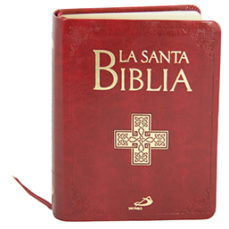 leer LA SANTA BIBLIA gratis online