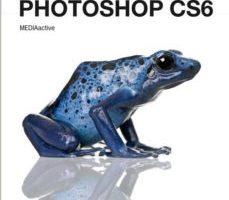 leer MANUAL DE PHOTOSHOP CS6 gratis online