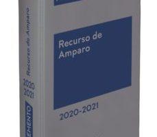leer MEMENTO PRACTICO RECURSO DE AMPARO gratis online