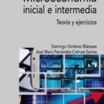 leer MICROECONOMIA INICIAL E INTERMEDIA gratis online