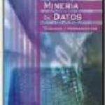 leer MINERIA DE DATOS : TECNICAS Y HERRAMIENTAS gratis online