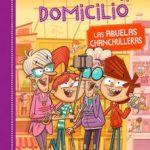 leer MISTERIOS A DOMICILIO 3: ABUELAS CHANCHULLERAS gratis online