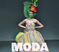 leer MODA. TODA LA HISTORIA (2019) gratis online