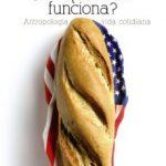 leer Â¿POR QUE NADA FUNCIONA?: ANTROPOLOGIA DE LA VIDA COTIDIANA gratis online
