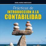 leer PRACTICAS DE INTRODUCCION A LA CONTABILIDAD gratis online