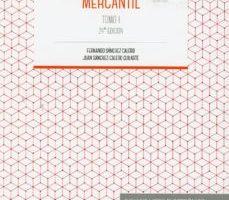 leer PRINCIPIOS DE DERECHO MERCANTIL