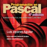 leer PROGRAMACION EN PASCAL gratis online
