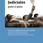 leer SUBASTAS JUDICIALES PASO A PASO gratis online