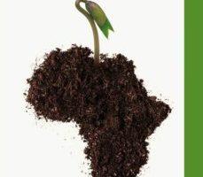 leer SUBDESARROLLO Y ESPERANZA EN AFRICA gratis online